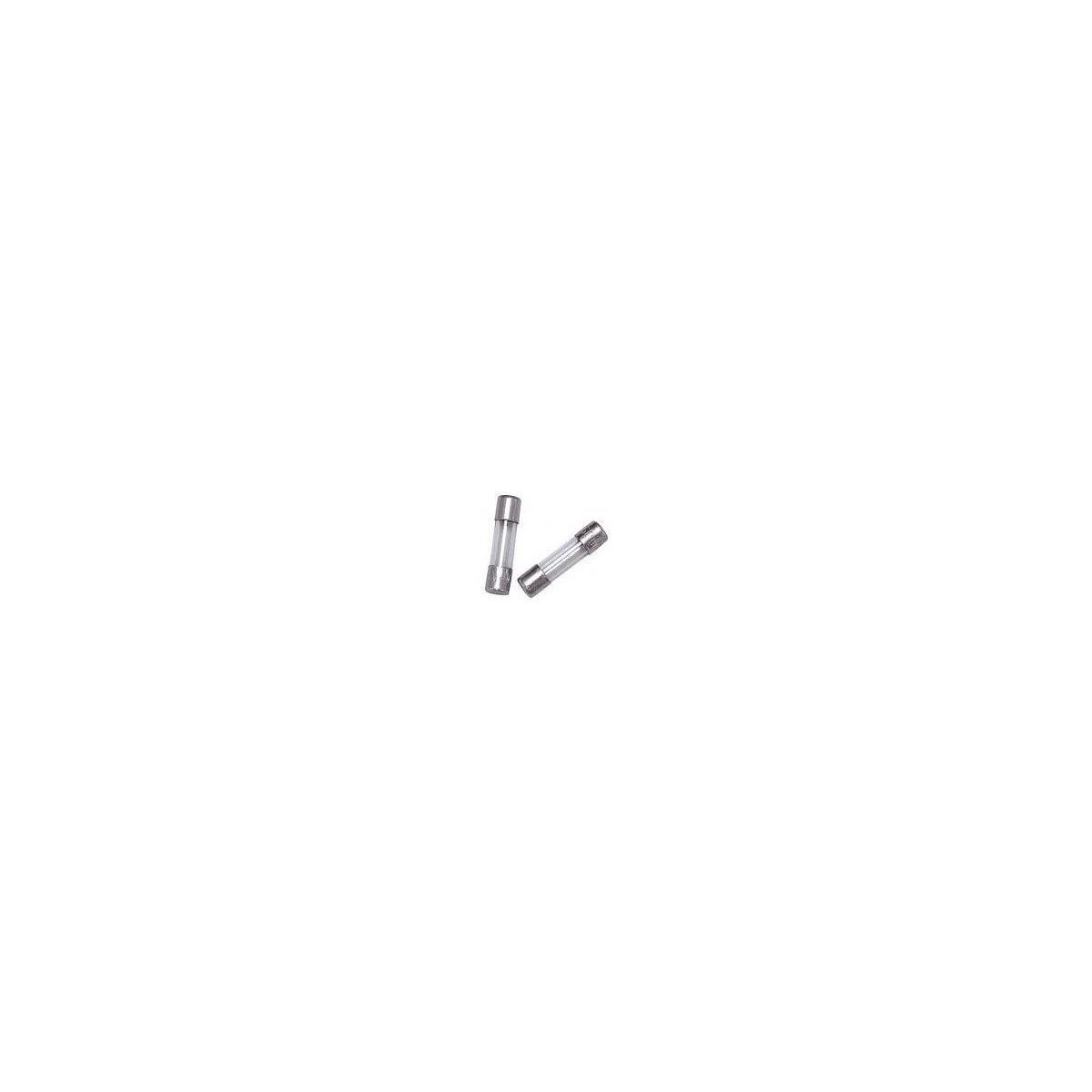 FUSIVEL - F RAPIDO 5X20MM (PACOTE COM 10 UNIDADES )-   0,8A