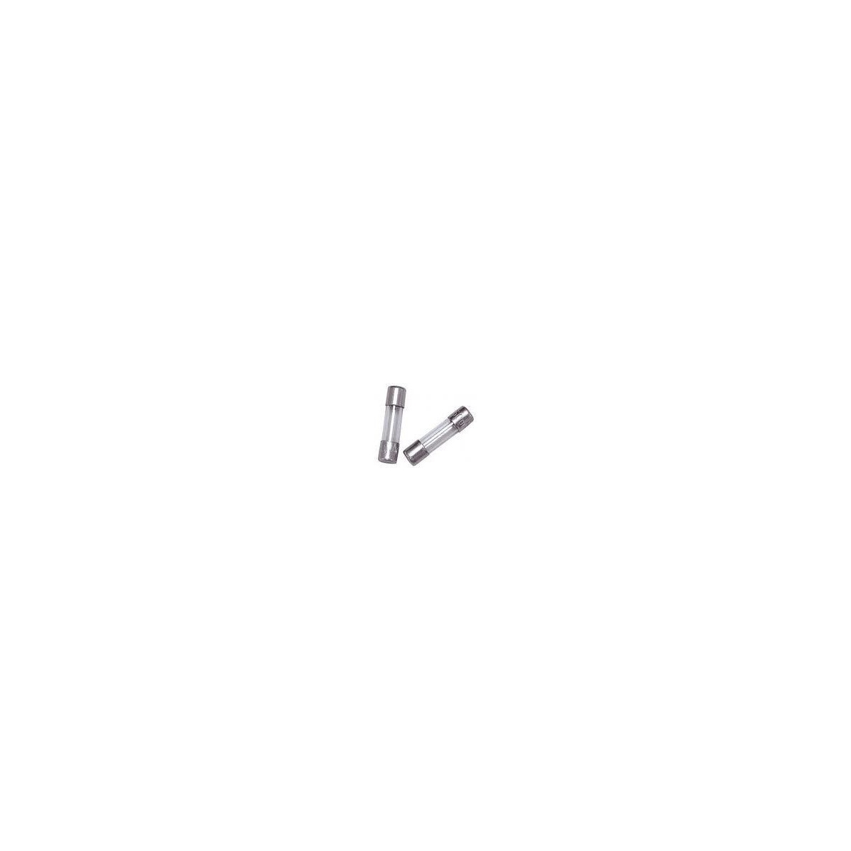FUSIVEL - F RAPIDO 5X20MM (PACOTE COM 10 UNIDADES )-   2A