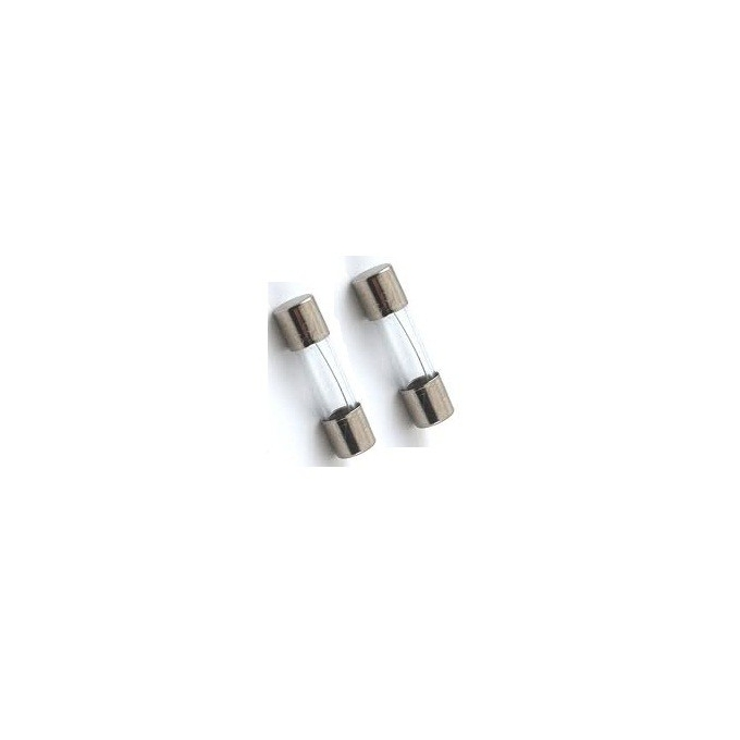 FUSIVEL - T RETARDO 5X20MM-   1A